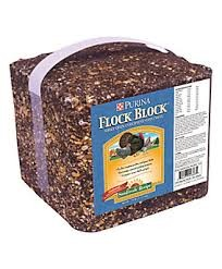 25LB. PURINA FLOCK BLOCK-182