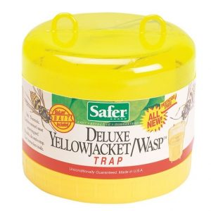 Deluxe Yellow Jacket/Wasp Traps-1530