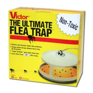 Ultimate Flea Trap-1533