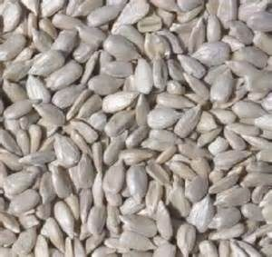 50Lb Coarse Sunflower Hearts-814