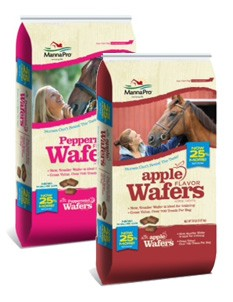 20 LB Peppermint Wafers Horse Treats-1624