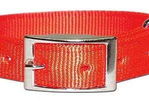 "1""x26"" Orange Nylon Dog Collar-1974"