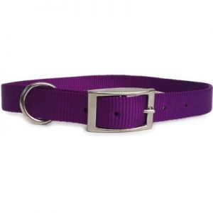 "1""x26"" Purple Nylon Dog Collar-1976"