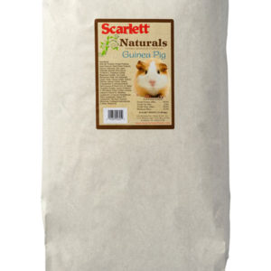 guinea-pigs-natural-Standish Milling