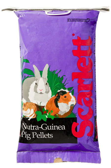 guinea-pigs-nutra-Standish Milling